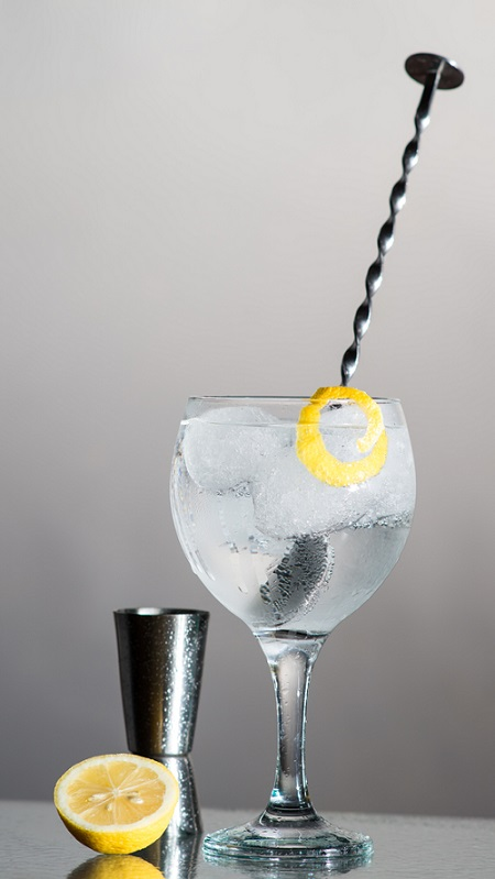 Preparado Gin Tonic