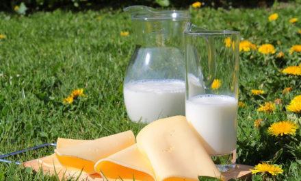 Mitos y verdades sobre la leche y sus derivados ¡conócelos!