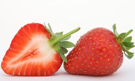 Las fresas evitan la placa dental y fortalecen el esmalte