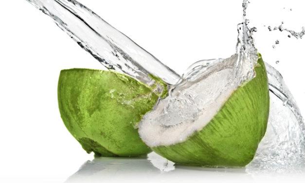 El agua de coco es la bebida del verano. ¡Te contamos los motivos!