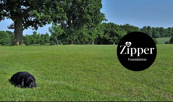 Medik8 presenta la Fundación Zipper