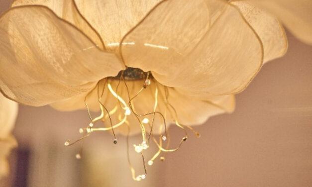 Lámpara Baobab, un diseño emocional y sostenible